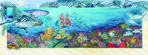 P18-19 A Coral Reef